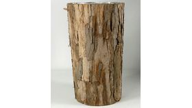 Image of a Bark Vase, Tall