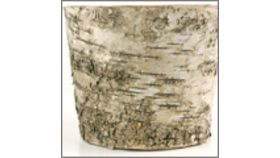 Image of a Bark Vase, Medium