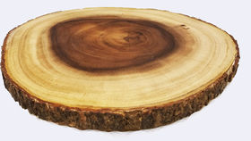 Image of a Wood Round