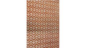 Image of a Burnt Orange Modern Rug