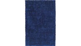 Image of a Blue Shag Rug