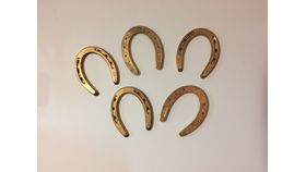 Image of a Gold Horseshoes