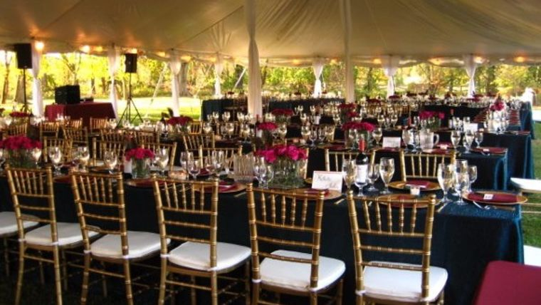 Gold & Navy Reception Area w/ Tent Liners and Pole Drapes : goodshuffle.com