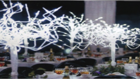 Image of a Decor LED Lighting