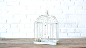 Image of a White Birdcage