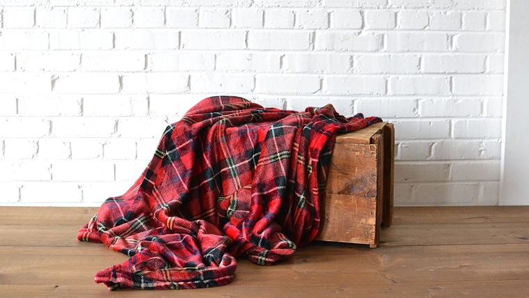 Image of a Red Flannel Throw Blanket