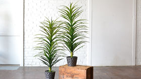 Image of a Faux Potted Plant with Planter