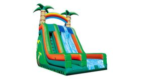 Image of a Tropical Inflatable Slide