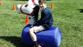 Image of a Pony Hoppers