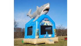 Image of a Feeding Frenzy Small Moonbounce