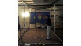 Image of a Batting/Tennis Cage