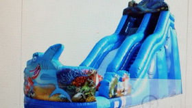 Image of a Inflatable Shark Water Slide