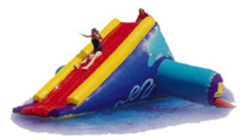 Image of a Dolphin Inflatable Water Slide