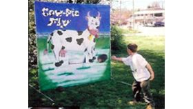 Image of a Cow Pie Fly Bean Bag Toss