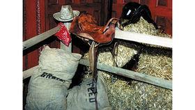 Image of a Prop: Western, Hay Bales