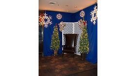 Image of a Christmas: Snow Flake Lights 15""