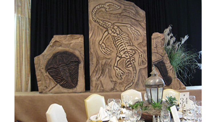 Picture of a Prop: Safari, Fossil Wall - Large