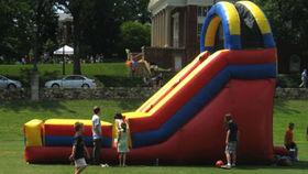 Image of a Slide, 18'