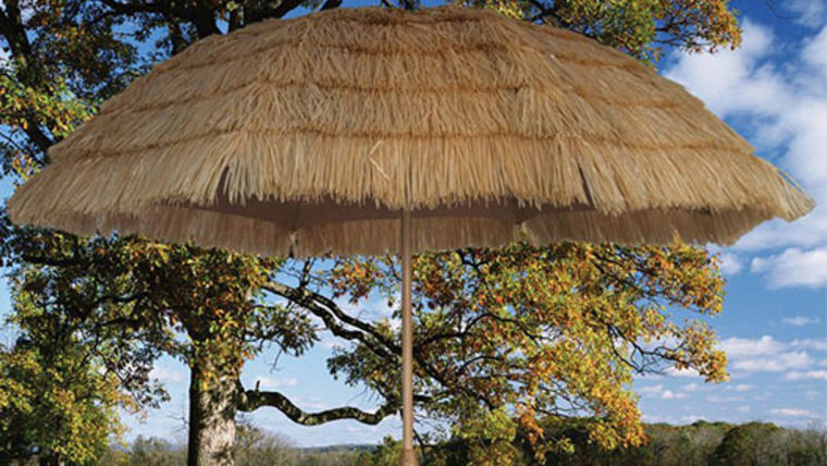 Picture of a Umbrella: Raffia, Tan