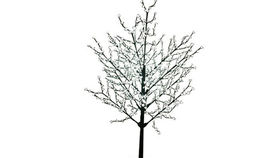 Image of a Foliage: LED Blossom Tree Type I White