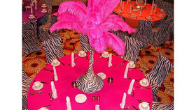 Image of a Feather Palms: Zebra with Pink Feathers