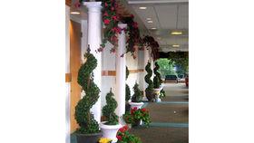 Image of a Garden Trellis Walkway