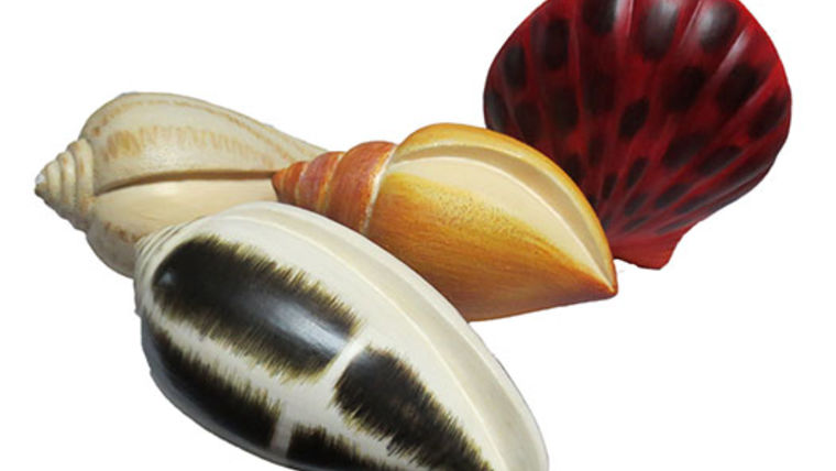Picture of a Props:  Shells:  Mixed Kit of 4 to 6/Box