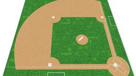 Image of a Carpet: Baseball Diamond Design