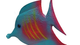 Image of a Blue Tropical Fish