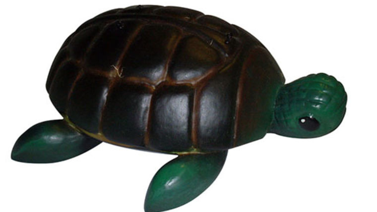 Picture of a Props:  Under the Sea, Turtles:  Small