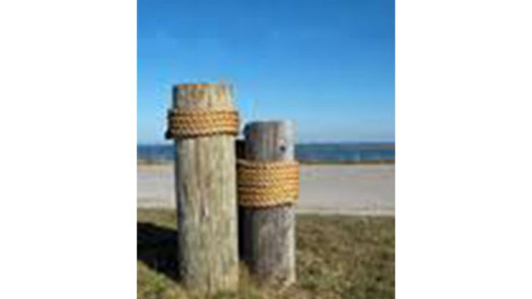 Picture of a Small Dock Post