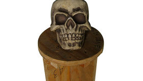 Image of a Prop: Halloween, Skulls (set of 24)