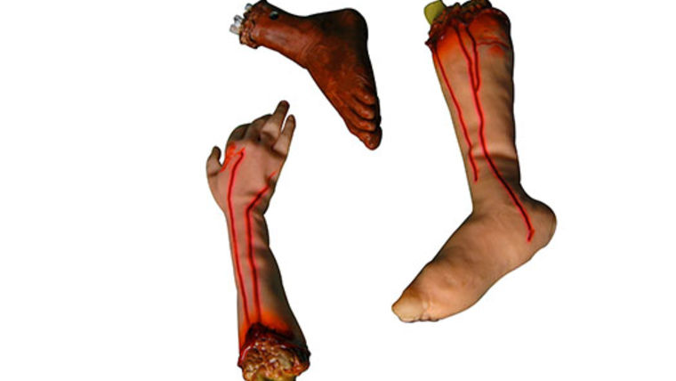 Picture of a Prop: Halloween, Bloody Arms/Legs/Feet set of 4