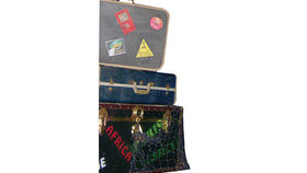 Image of a Prop: Tropical, Travel Luggage set of 3