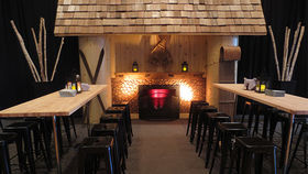 Image of a Fireplace: Ski Lodge Inspired Natural Knotty Pine & Stone