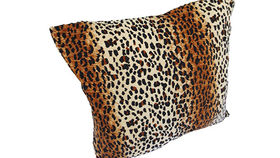 Image of a Leopard Print Pillow
