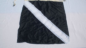 Image of a Nautical Signal Flag, Square with Stripe