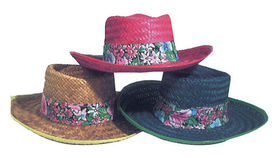 Image of a Men's Straw Hat