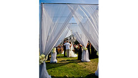 Image of a Sheer Drape Canopy (Outdoor)
