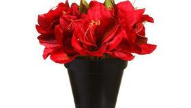Image of a Silks: Amaryllis Red