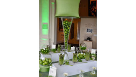Image of a Double Trumpet Vase: Lime Green Shade with Limes