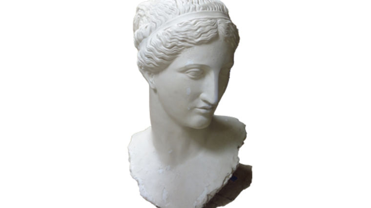 Picture of a Statue: Athena Bust