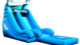 Image of a Dolphin Splashdown Single Lane Wet Slide