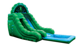 Image of a Freaky Frog Single Lane Wet Slide