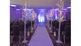 Image of a Decorative Winter White 6ft LED Light Birch Trees