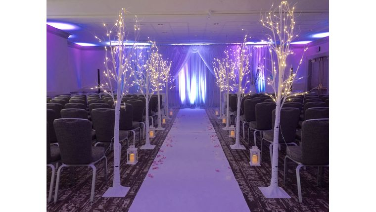 Picture of a Decorative Winter White 6ft LED Light Birch Trees