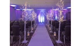 Image of a Decorative Winter White 6ft LED Light Birch Tree