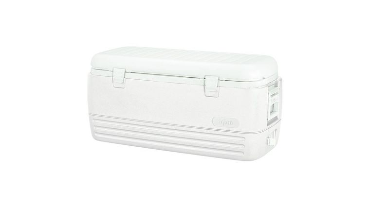 Picture of a 100 Qt Cooler
