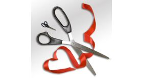 Image of a Big Scissors