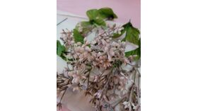 Image of a Floral Buds/Artificial Frosted Pink